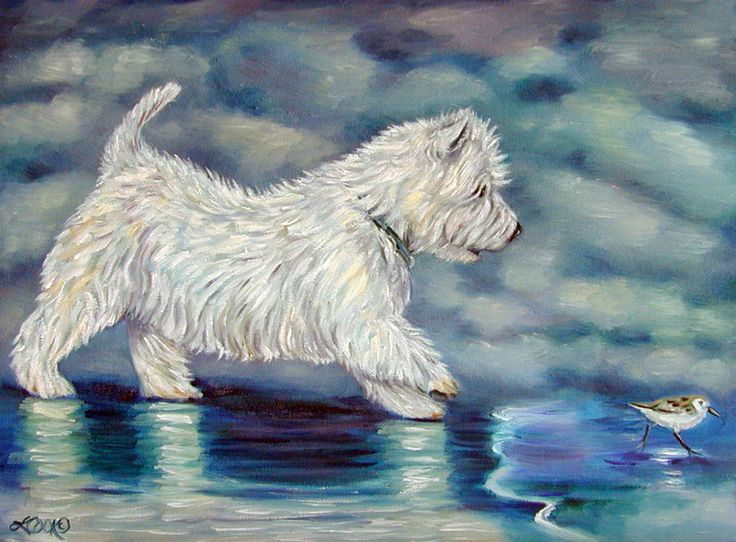 398 Best Images About Westie Thoughts Amp Stuff On Pinterest