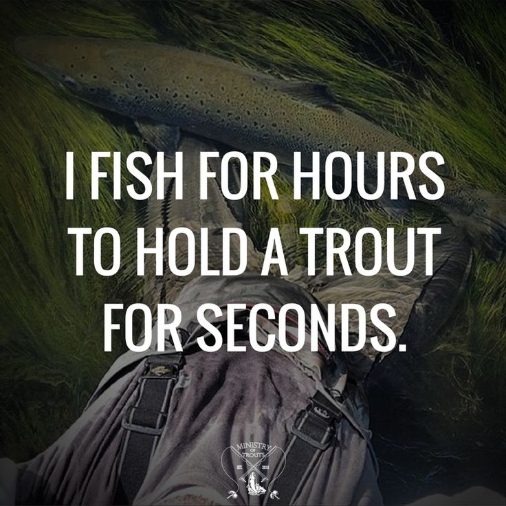 Fly fishing is so rewarding.. even if the moment lasts only a few seconds.