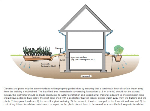 how to prevent flooding. | Landscaping around trees ...