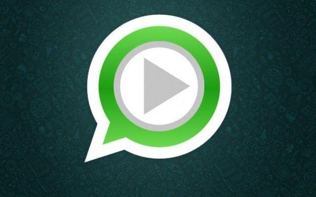 Sabato mattina whatsapp diventera` a pagamento se hai almeno venti contatti manda questo messaggio a loro #whatsapp