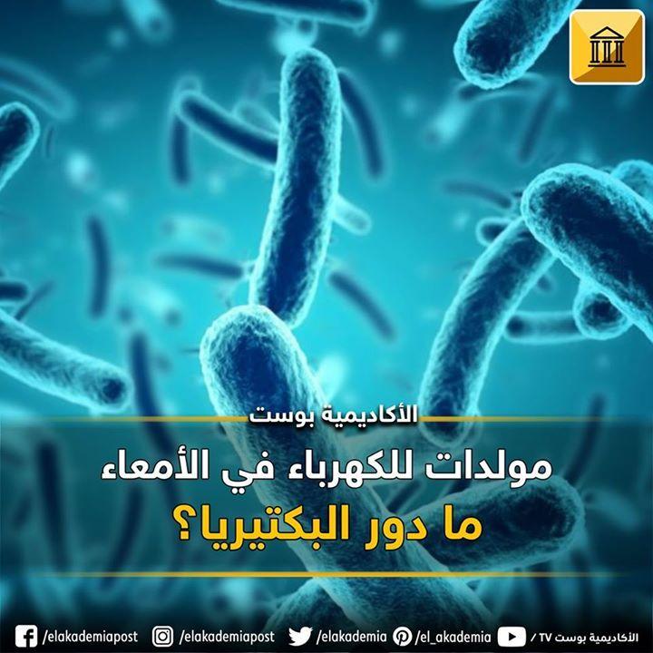 من المعروف أن البكتيريا تستطيع توليد الكهرباء خارج خلاياها وهذا ما تم إثباته في البكتيريا التي تتغذي على الأملاح المعدنية ولكن هل توجد Movie Posters Movies Tv