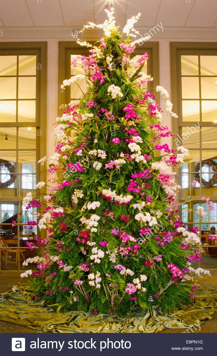 Download this stock image: This spectacular Christmas Tree is made of tropical plants including orchids, ferns and bromeliads. The tree stands at over 20 f - E8PN1G from Alamy's library of millions of high resolution stock photos, illustrations and vectors.