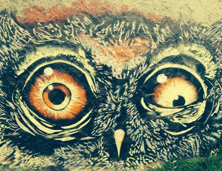 Buho, Животное, Граффити, Ave, Рисование, Сумасшедший