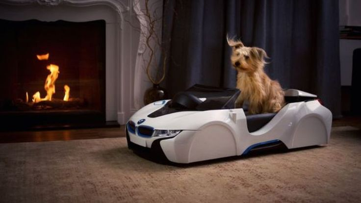 Barking Mad Owners Can Buy BMW Dog Beds With Built-In Fans To Recreate Thrill Of The Open Road (VIDEO)