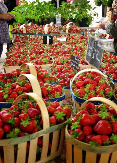 ♔ Strawberries ~ Provence ~ France