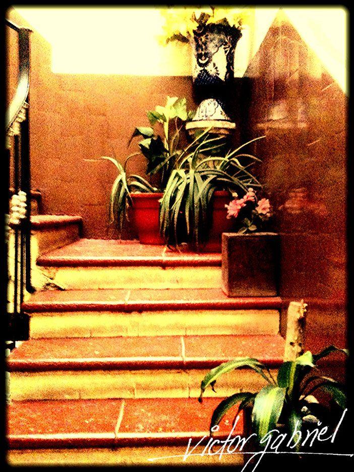 Escaleras en edificio del Centro Histórico de la Ciudad de México