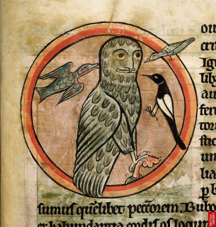 Detail from the Salisbury Bestiary, c. 1250. La lechuza de  Atenea, símbolo de la sabiduría, humanizada.