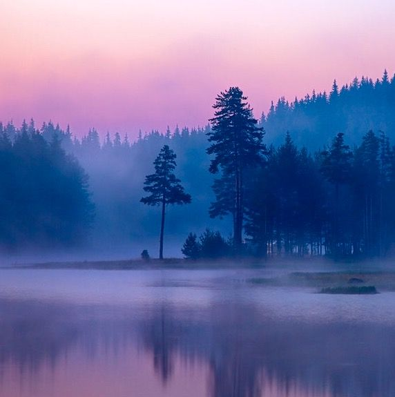 """""""The summer dawn's reflected hue, To purple changed Loch Katrine blue, Mildly and soft the western breeze, Just kiss'd the lake, just stirr'd the trees, And the pleased lake, like maiden coy, Trembled but dimpled not for joy...""""      ~ Walter Scott, """"Lady of the Lake"""" (image at outdoor-photos)"""