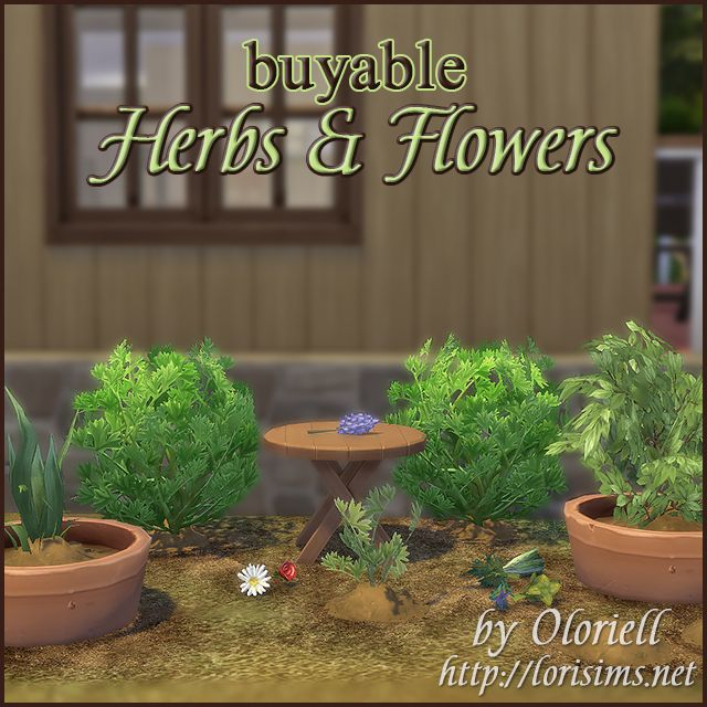 Herbs & Flowers for TS4 by Oloriell