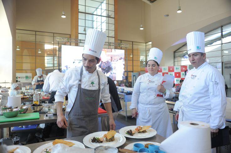 Chef Sur 2013