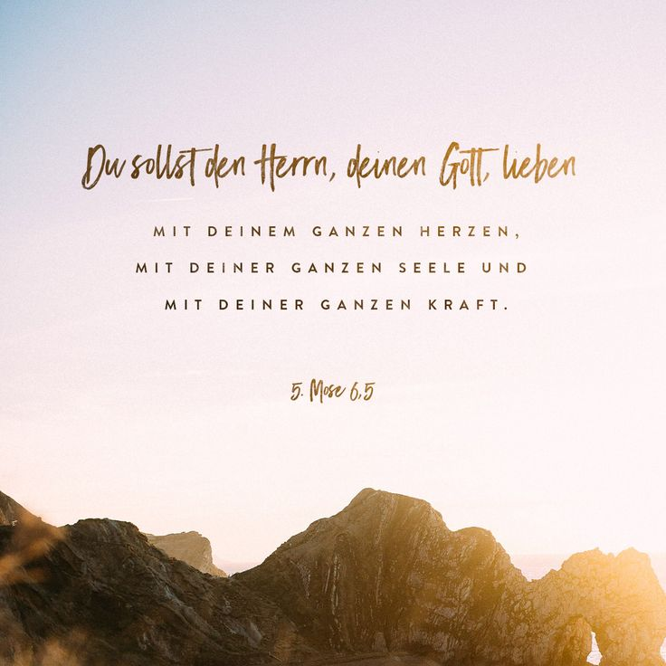 Vers Des Tages Bibel
