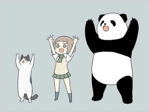 24 Best Anime Panda Girl Images On Pinterest Manga Anime