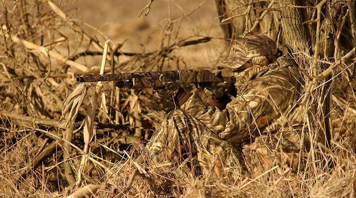 Camouflage and concealment the art of staying hidden