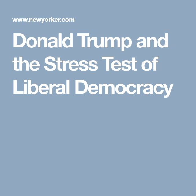 Donald Trump and the Stress Test of Liberal Democracy