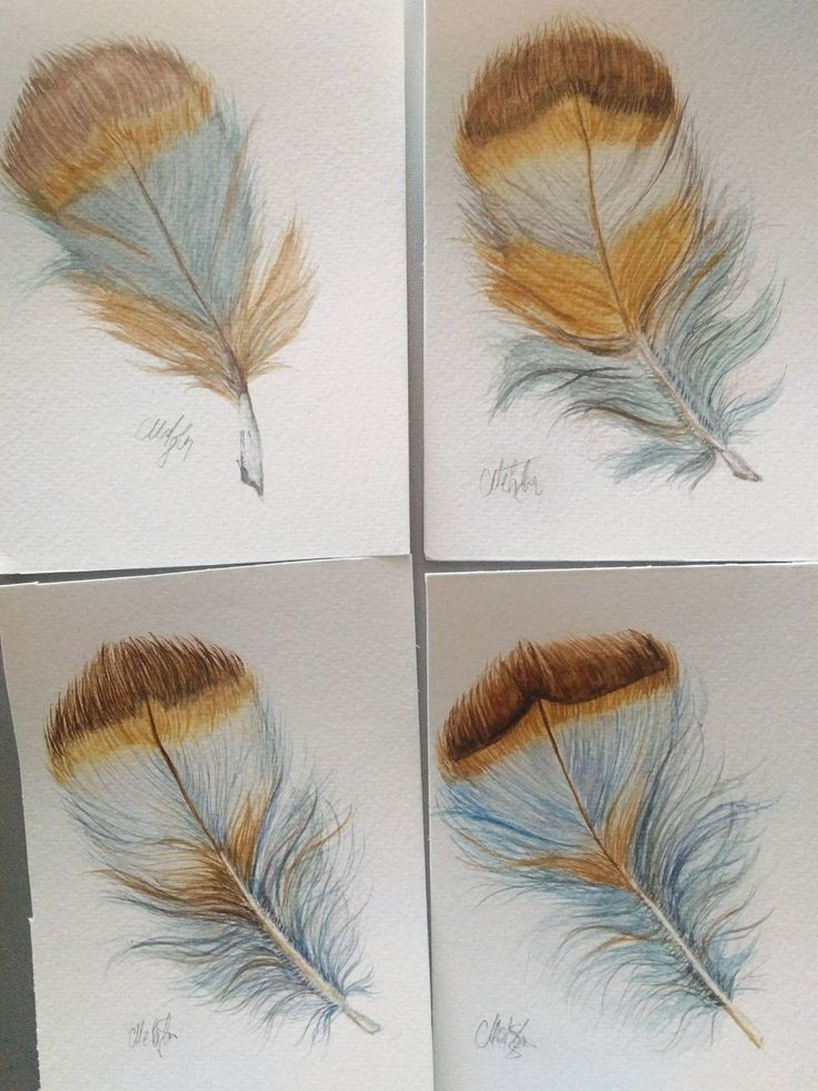 My Feathers Experiment by Mira Metzler