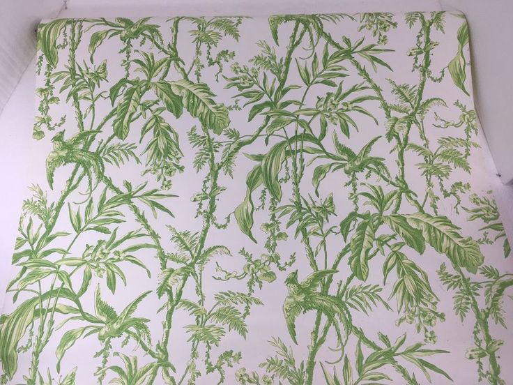 green trellis wallpaper schumacher - photo #14