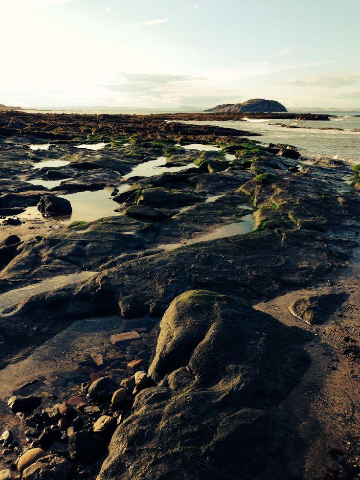 Rocks at low tide, North Berwick