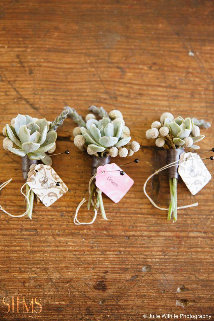 succulent boutonniere www.stemfloral.com  I www.juliewilhite.com  I  www.barrmansion.com