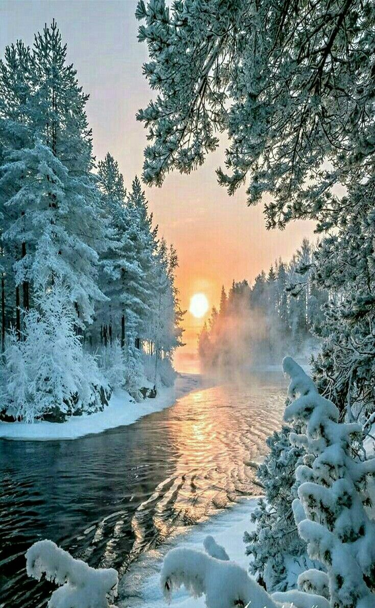 Ethereal landscapes nature photography by donna geissler - Candy Arteye Candyclear Wintercanadian Artistswinter Scenescanadalandscapeschoolart Work
