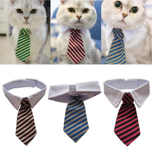 Dog Cat Striped Bow Tie Collar Pet Adjustable Neck Tie Collar #Unbranded