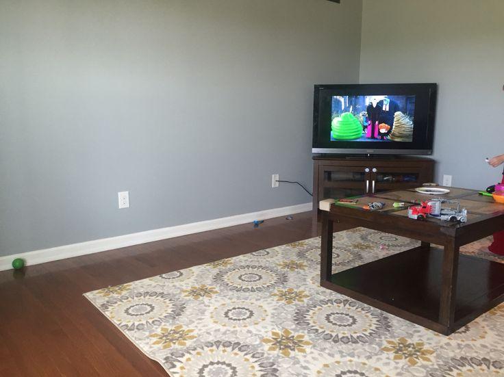 Behr Lunar Surface Main Wall Color Home Decor