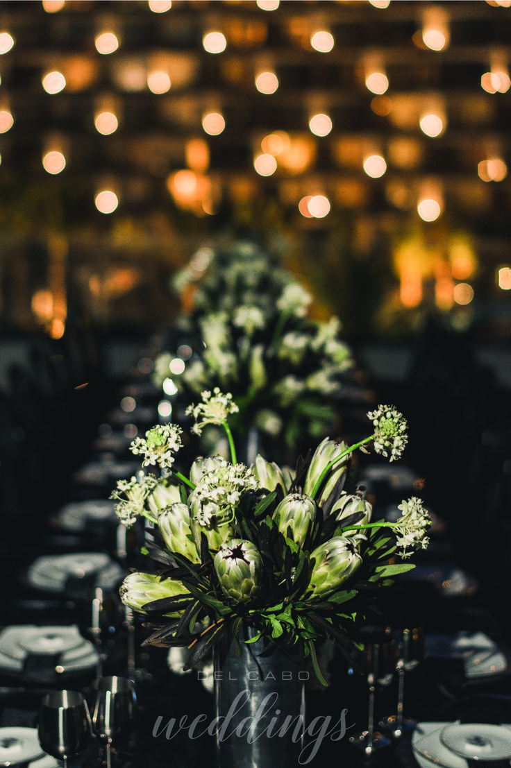 Special touch in your reception. Get amazing ideas in our blog for your dream wedding in Cabo!
