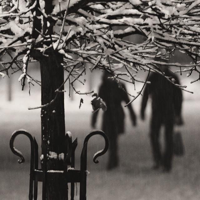 Night snowy walk by Róbert Ragan