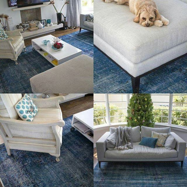 Our beautiful Plato Vintage rug looks absolutely stunning in this home, the client has tied in the colour throughout the room and it looks fantastic. #vintages #vintage #vintagecollection #pupsofinstagram