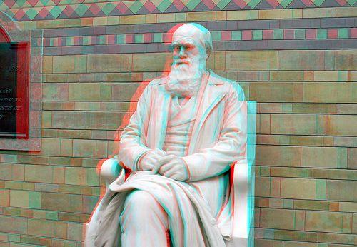 Statue of Charles Darwin 3D