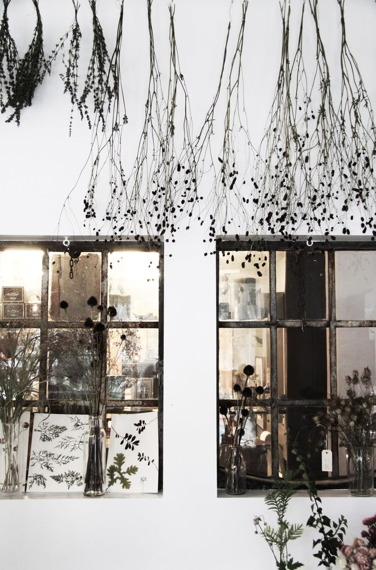 Landet Järna Runtom på väggarna hänger vackra egenhändigt tillverkade växtaffischer och i vaser på hyllor och bänkar trängs blommor. Just nu är det växter med vackra fröställningar, nypon och kärleksört som fyller laboratorieglasen. Det finns även vilda p
