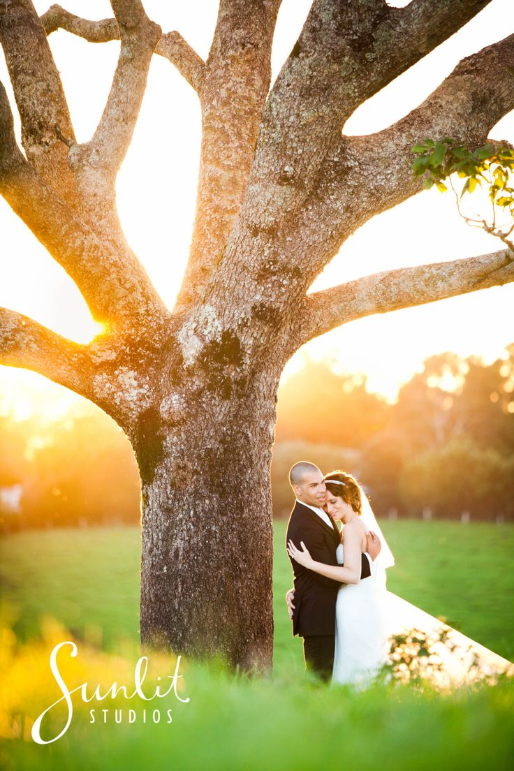 Maleny Manor Wedding Photography, Sunshine Coast Photographers Sunlit Studios