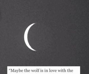 Maybe the wolf is in love..