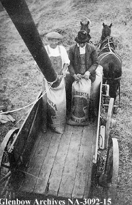 Bagging grain at experimental farm at Lethbridge, Alberta. 1912