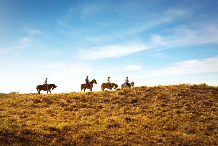 7 Amazing Places for Horseback Riding in the Mountains