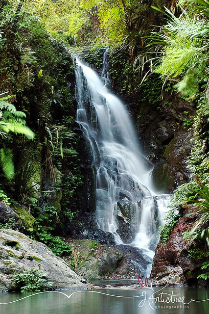Elabana Falls  Lamington National Park | Gold Coast Hinterland | Australia
