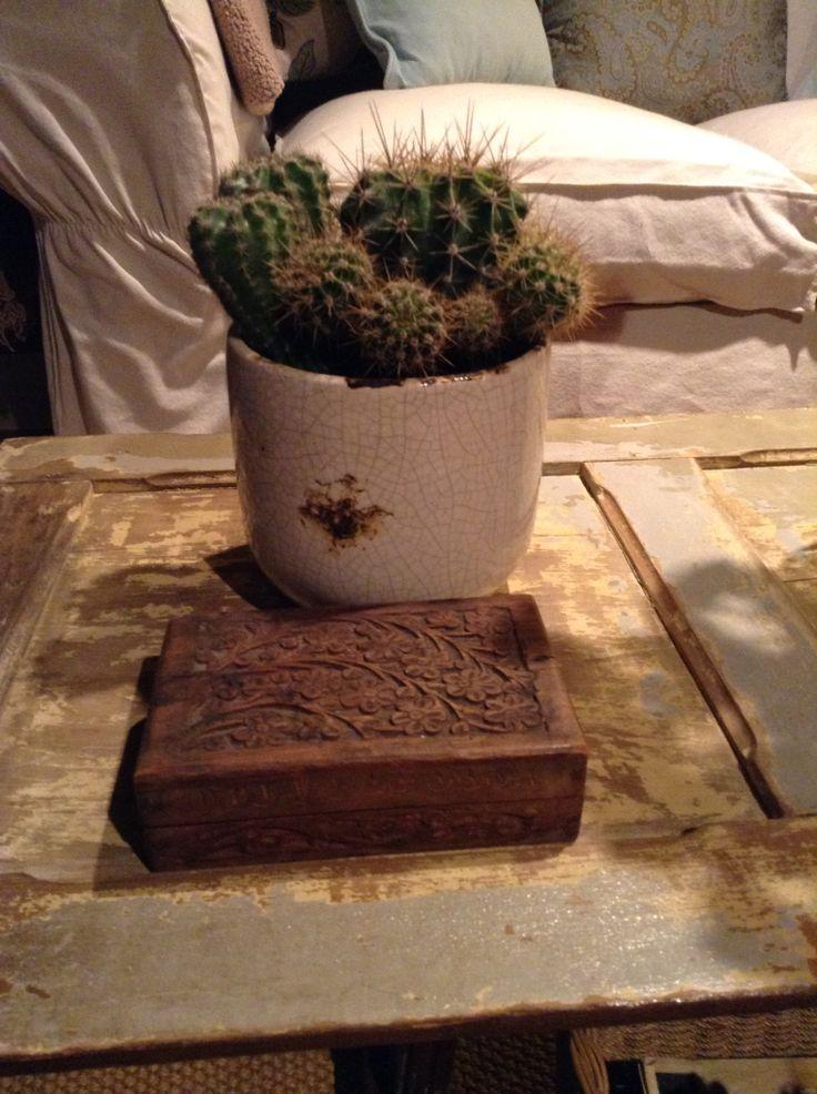Cactus. Le da un toque verde al lugar.
