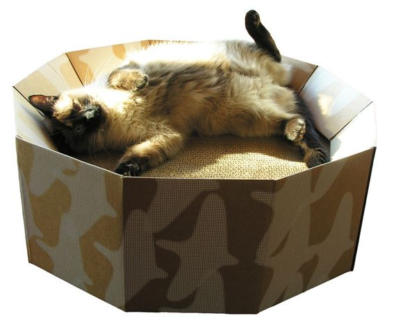 http://coolforcatsuk.com/ - great blog for unusual cat furniture ideas