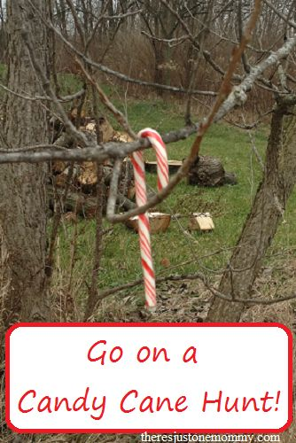 Go on a candy cane hunt