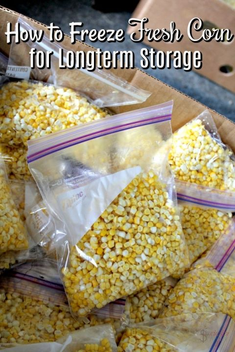 How to preserve corn - Find a great deal or have a garden that produced an overabundance of sweet corn? Learn how to freeze corn for long term storage so you can eat fresh all year long!