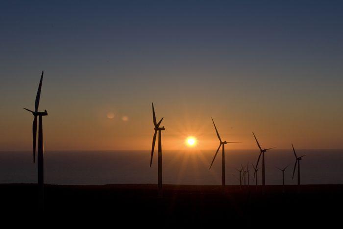 La Canela Wind Farm, La Serena Chile