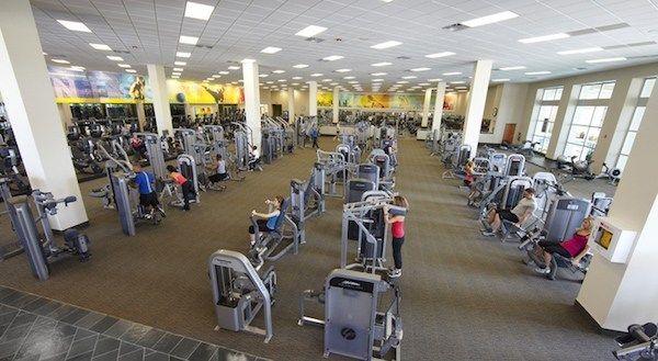 24 Hour Fitness Vs La Fitness Pros Cons Comparison Trusty Spotter La Fitness 24 Hour Fitness Fitness