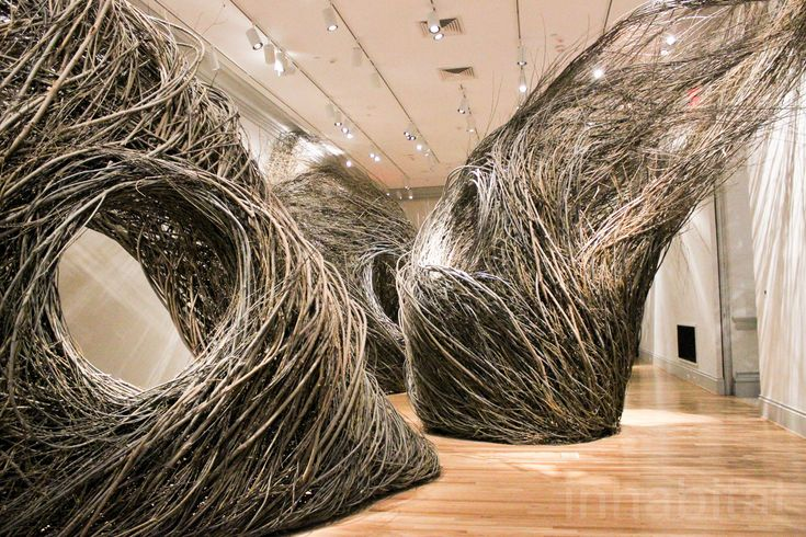 Giant wind-blown pods are made from six tons of willow saplings