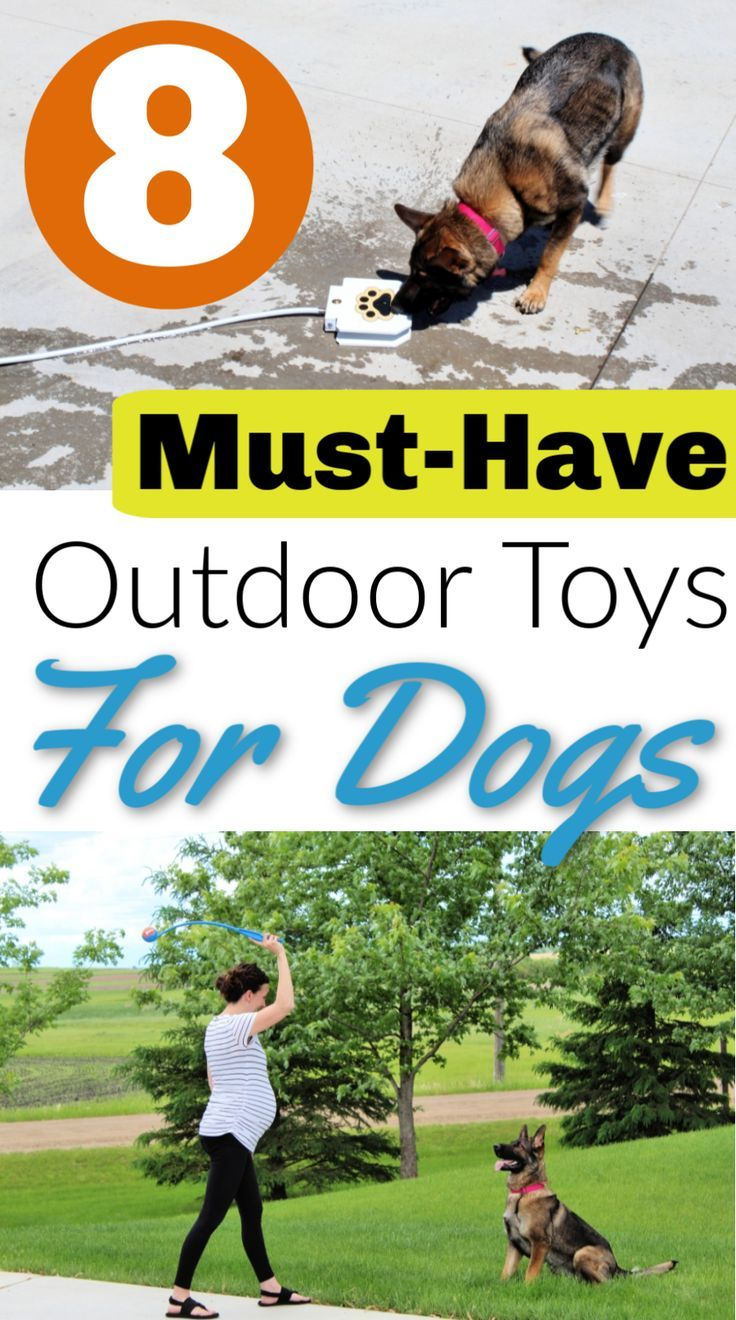 New Diy Dog Toys For Outside Puppys Ideas Diy Toys Summer Dog