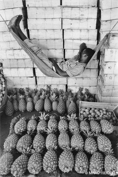 pineapple siesta - Guinea, 1960