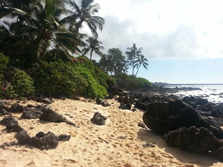 Beautiful Big Beach, Maui