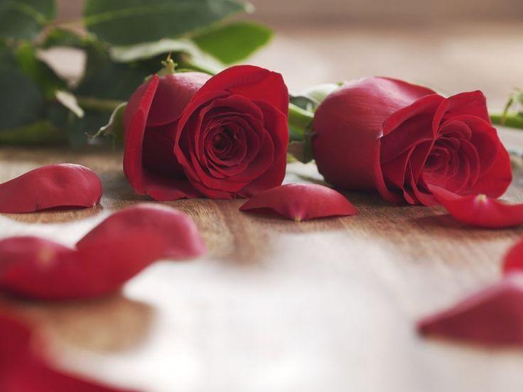 Les pétales de rose séchés peuvent être réutilisés dans des recettes gourmandes ou cosmétiques