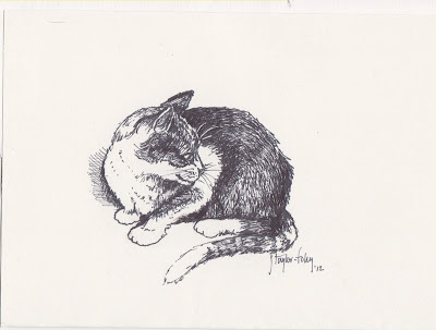 pen and ink: very simple cat sketch