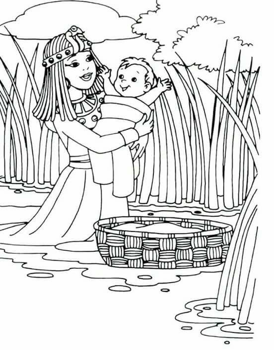 Mejores 70 imágenes de Moises Bebe en Pinterest | Moises bebes ...