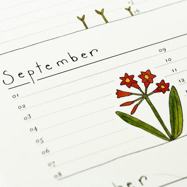 detail of Birthday Calendar: flower illustrations by Fiona Berrisford