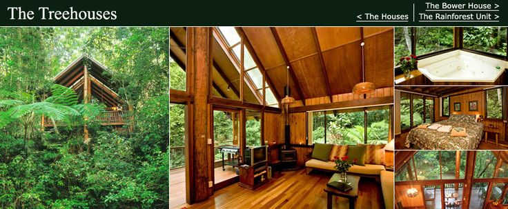 Treehouse Anyone???......These luxury pole homes offer a secluded, private and peaceful environment surrounded by rainforest and are set on the banks of the Ithaca river. Each 2 bedroom Treehouse boasts furniture crafted from our own rainforest timbers, a gas barbeque and hammock on the spacious balcony ,a fabulous double corner spa, wood fireplace and full gourmet kitchen, fluffy bathrobes and slippers, hand-made soaps, washing machine and dryer, IDD telephone, internet outlet, DVD and TV…